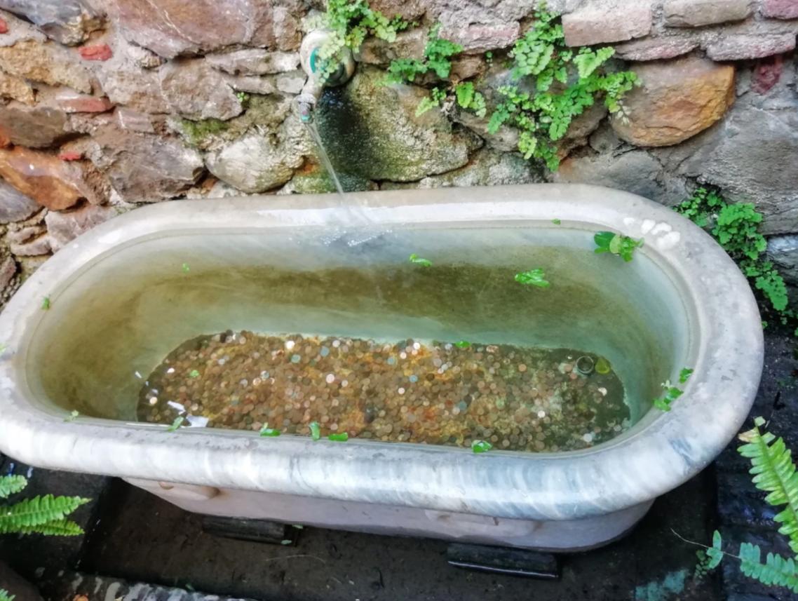 Ванна с монетами